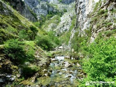 Picos de Europa-Naranjo Bulnes(Urriellu);Puente San Isidro; ruta del cares valle del jerte